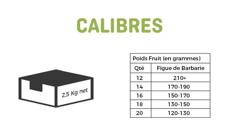 calibres-figue-fr