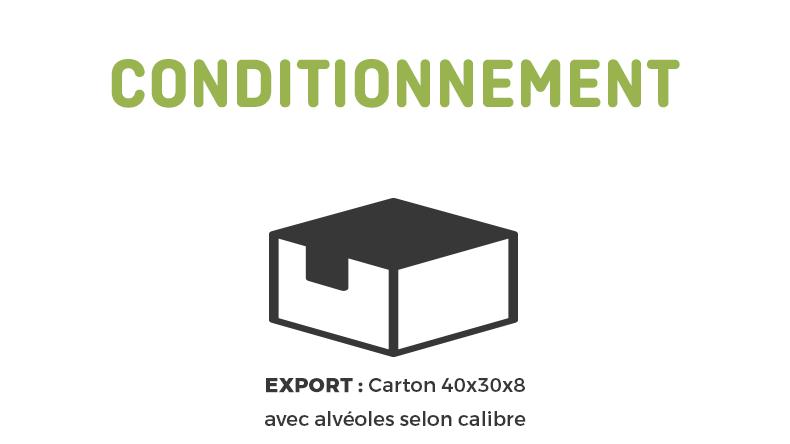conditionnement-export-fr